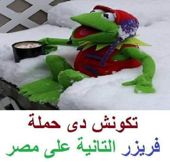 FB_IMG_1485630482512.jpg